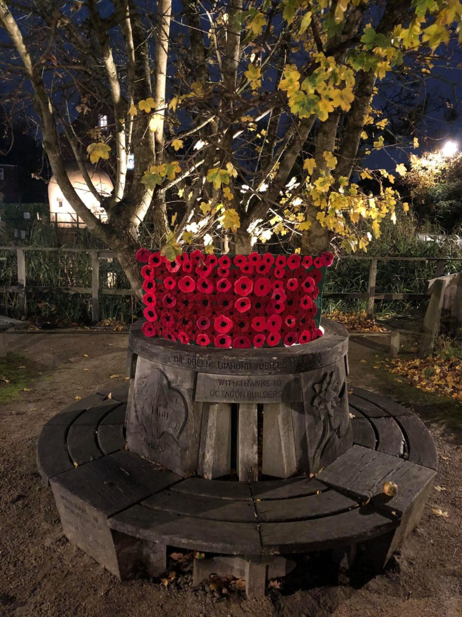 Poppies At Shenley Memorial